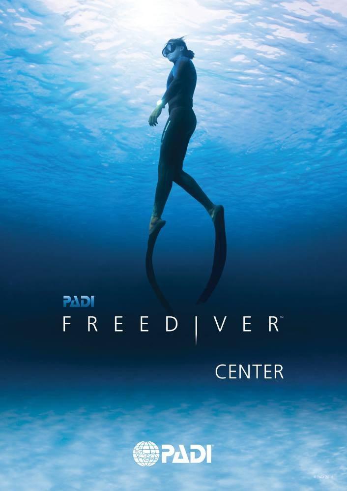 freediver, free. diver, PADI, diver, underwater