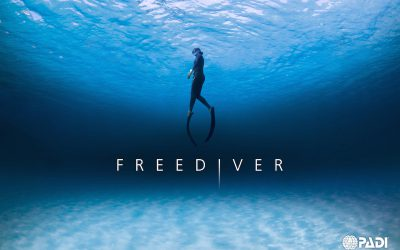My Freediving Journey