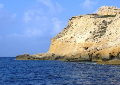 snorkeling scenery