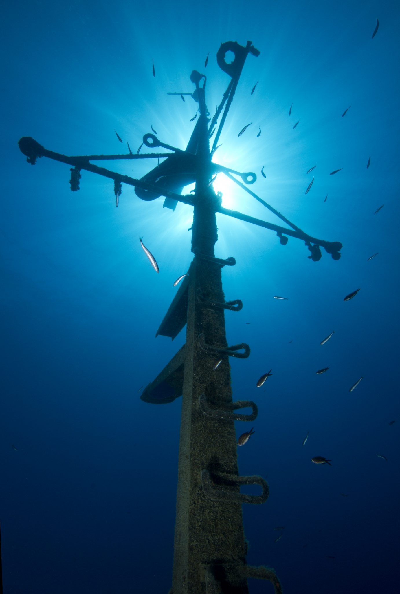wreck speciality, Limassol, Constandis, sun, PADI Specialty
